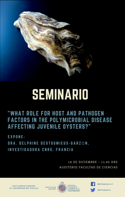 What role for host and pathogen factors in the polymicrobial disease affecting juvenile oysters?